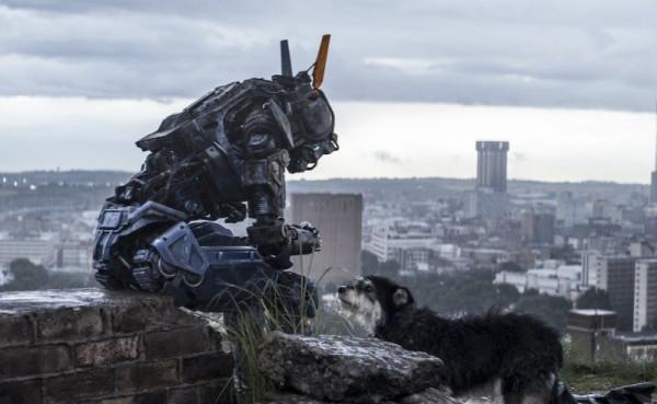 robot po imeni chappi zachem lyudyam nuzhen iskusstvennyj intellekt 9 «Робот по имени Чаппи»: Роботы вместо детей, бандиты вместо родителей