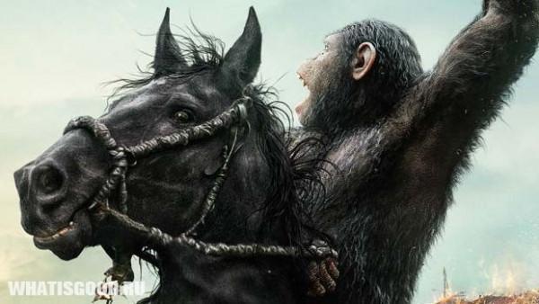 planeta obezyan kak civilizovannyj mir smotrit na ostalnyx 3 Планета обезьян: Как цивилизованный мир смотрит на остальных