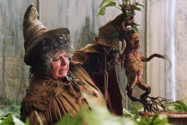 garri potter detskoe posobie po okkultizmu 13 «Гарри Поттер»: Детское пособие по оккультизму