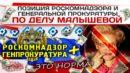 Позиция Роскомнадзора и Генеральной прокуратуры по делу Малышевой