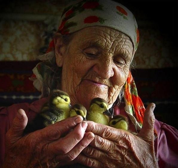 tradicionnye semejnye cennosti chto stoit za etim ponyatiem 2 Традиционные семейные ценности: Что стоит за этим понятием?