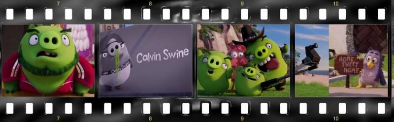 osobennosti angloyazyichnoy versii multfilma angry birds v kino 10 800x248 custom Особенности англоязычной версии мультфильма «Angry Birds в кино»