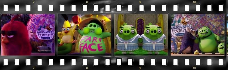 osobennosti angloyazyichnoy versii multfilma angry birds v kino 3 800x248 custom Особенности англоязычной версии мультфильма «Angry Birds в кино»