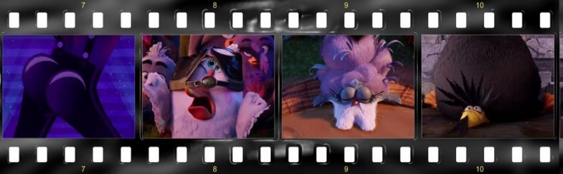 osobennosti angloyazyichnoy versii multfilma angry birds v kino 4 800x248 custom Особенности англоязычной версии мультфильма «Angry Birds в кино»