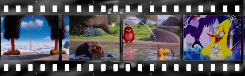 osobennosti angloyazyichnoy versii multfilma angry birds v kino 5 800x248 custom Особенности англоязычной версии мультфильма «Angry Birds в кино»