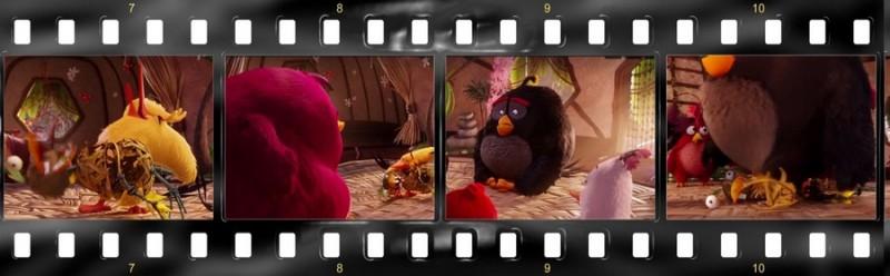 osobennosti angloyazyichnoy versii multfilma angry birds v kino 7 800x248 custom Особенности англоязычной версии мультфильма «Angry Birds в кино»