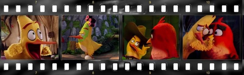 osobennosti angloyazyichnoy versii multfilma angry birds v kino 9 800x248 custom Особенности англоязычной версии мультфильма «Angry Birds в кино»