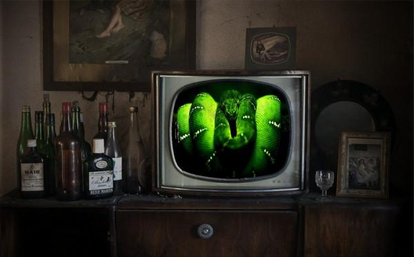 zelenyiy-zmey-na-golubom-ekrane (1)