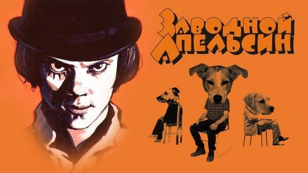 Фильм «Заводной апельсин»: О том, как зрителя превращают в «собаку Павлова»